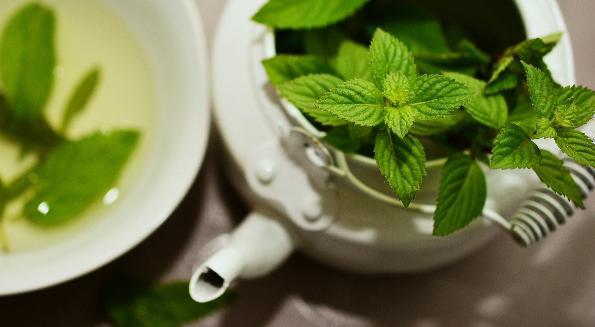 benefits of drinking mint tea
